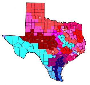 Texas2012districts