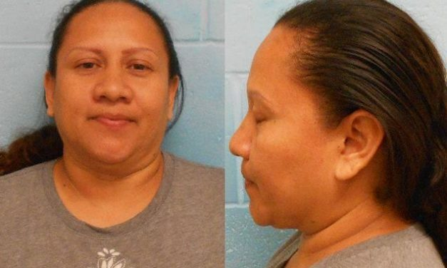 McAllen Woman Arrested for Auto Theft