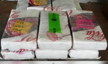 Over $201,000 worth of Drugs Seized at International Bridge