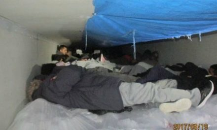 60 Undocumented Immigrants found in trailer