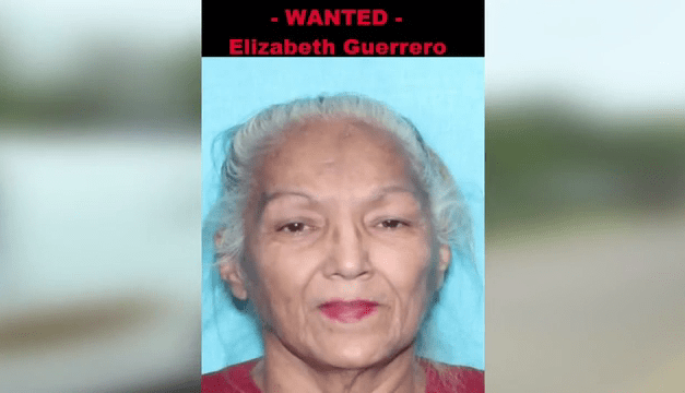 Grandmother accused of running over and killing son-in-law surrenders