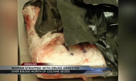 Over $19,000 worth of cocaine strapped to a woman's body as she crosses the border