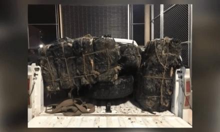 Marijuana valued at $340k Seized After Failed Backpack Smuggling Attempt
