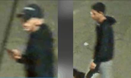 Burglary Of Vehicle Suspects Wanted In Brownsville