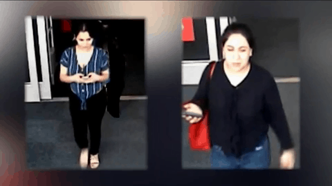 Women Of Interest Wanted In Theft Case