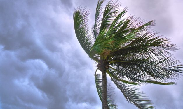 Hurricane Preparedness To-Do and Supply Checklist