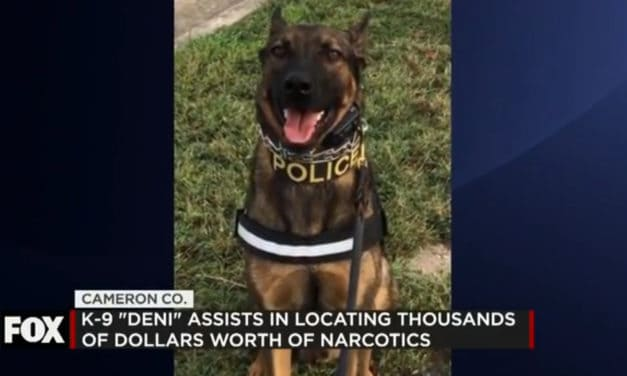K9 Critical in Locating Narcotics in Cameron County