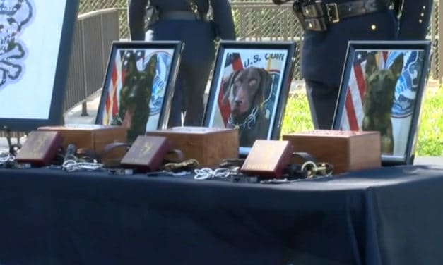 Fallen K9 Officers Honored