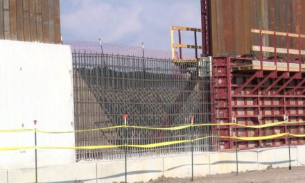'We Build the Wall' Concerned with Environmental Impact of the Wall