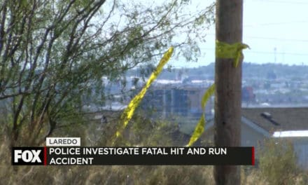Police Investigate Fatal Hit and Run