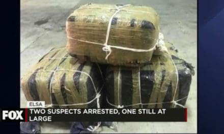 Border patrol seizes over $350,000 worth of narcotics