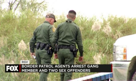 Federal Agents Arrest Gang member and Two Sex Offenders