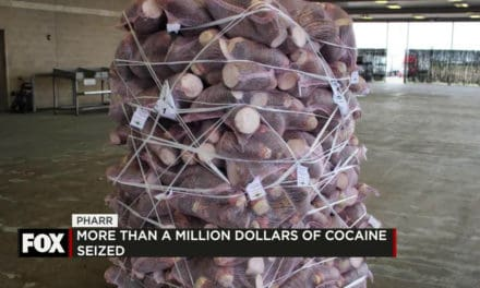 Million Dollar Narcotics Seizure in Pharr