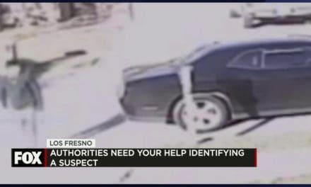 Authorities Need Your Help in Identifying a Burglary Suspect