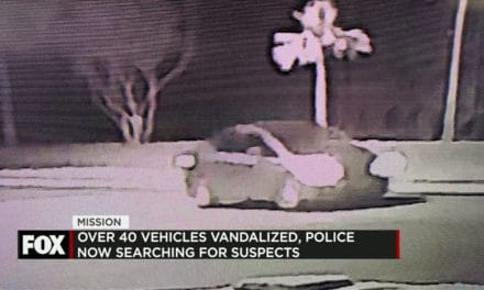 40 Vehicles Damaged in Vandalism; Police Search for Suspects