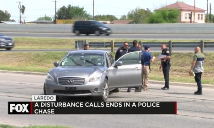 Domestic Disturbance Ends in Police Chase