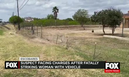 Suspect Charged After Fatally Striking Woman with His Car in Escobares